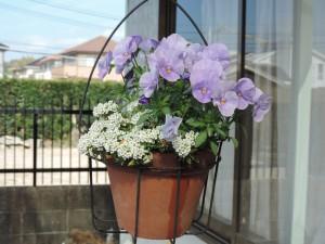 花 かご 2