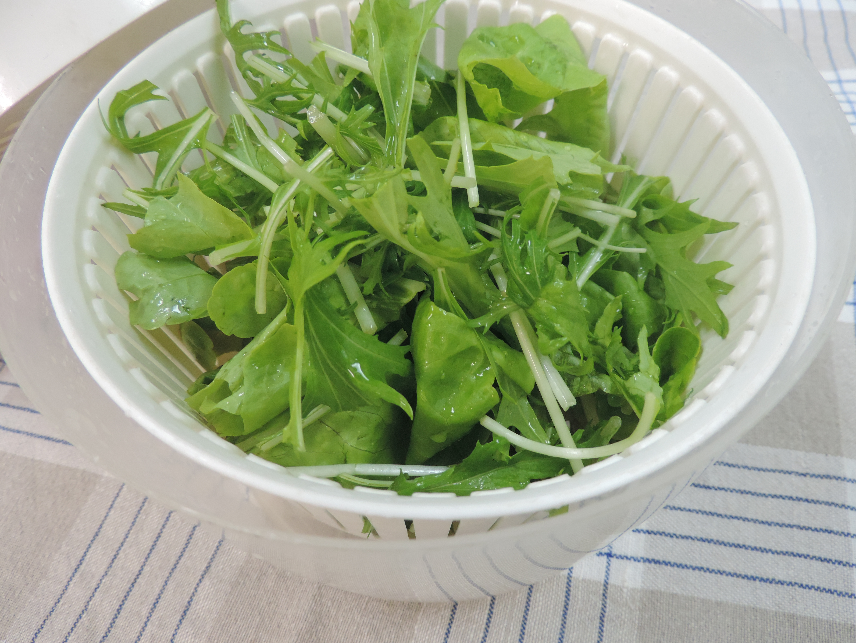 野菜水切り器 使用前